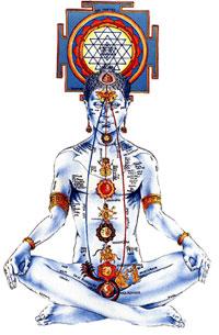 il piccolo amrit descrizione asana yogiche viparita